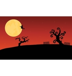 Halloween witch flying and dry tree silhouette vector