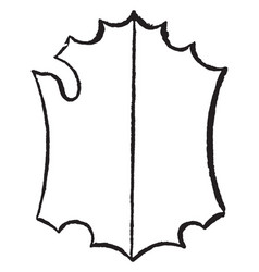 Ornate bouche shield with a decorative trim and a vector