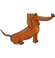 Cute dachshund dog cartoon vector