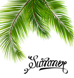 Lettering text summer with palm leaves vector