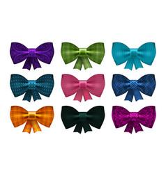 Set of satin bows bowknot ribbon for decoration vector