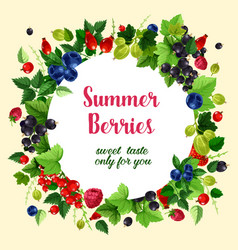 summer berries and fruits poster vector image