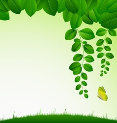 Spring green meadow with leaves and butterfly vector