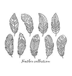 Black boho feather vector
