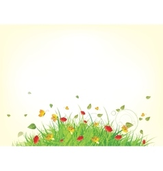 Green spring summer grass vector