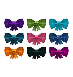 set of satin bows bowknot ribbon for decoration vector image