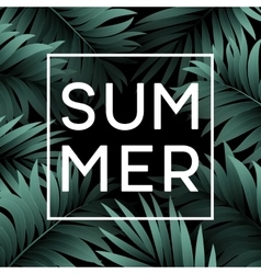 Summer tropical background of palm leaves vector image vector image