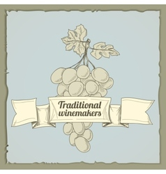 Vintage wine label with grapes vector image vector image