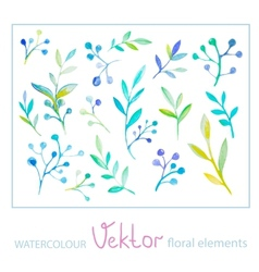 Set of watercolor floral elements vector