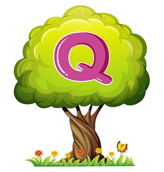 A tree with a letter Q vector image vector image