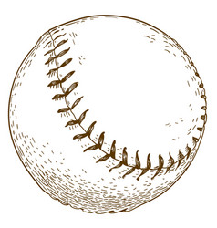 engraving of baseball ball vector image