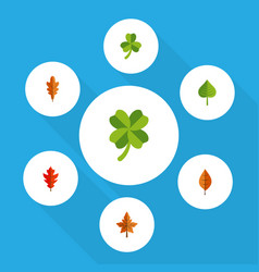 Icon flat leaves set of frond hickory leaf and vector
