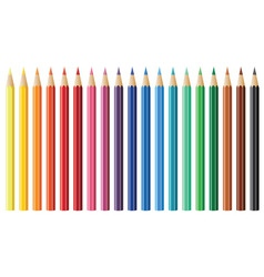 nineteen coloured pencils vector image vector image
