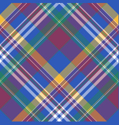 blue madras diagonal check plaid seamless fabric vector image vector image