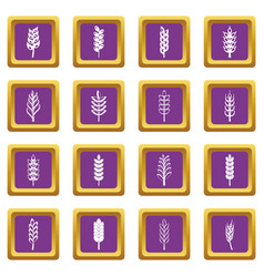 ear corn icons set purple vector image