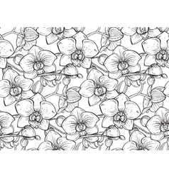 Floral seamless pattern with hand drawn orchid vector image