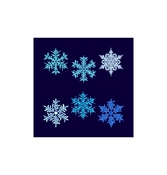 Six beautiful snowflakes on dark blue vector image vector image