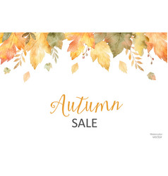 Watercolor autumn sale banner of leaves and vector