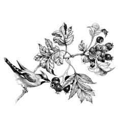 Wild exotic bird on twig vector