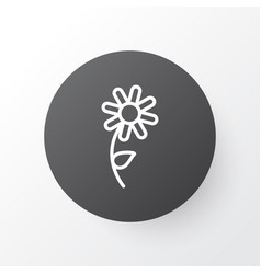 Daisy icon symbol premium quality isolated vector