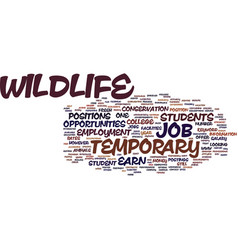 Temporary wildlife job text background word cloud vector