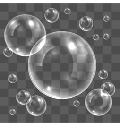 Transparent soap bubbles vector image