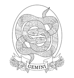 Gemini zodiac sign coloring book for adults vector