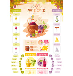 Wine infographic icons alcohol drink icon vector