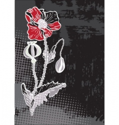 grunge floral card with poppy vector image