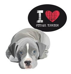 i love pitbull terrior vector image