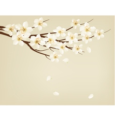Blossoming tree brunch with spring flowers vector