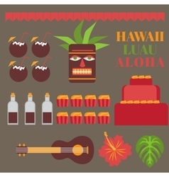 Celebration on hawaii island Luau party elements vector image