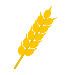 Wheat ear icon isolated vector