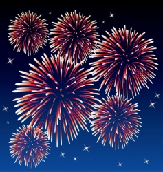 red fireworks vector image