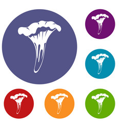 Chanterelle icons set vector