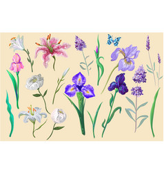 Flowers with butterfly collection for different vector