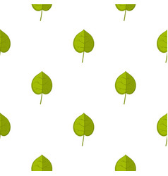 green linden leaf pattern seamless vector image vector image