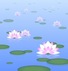Lotus pond vector image