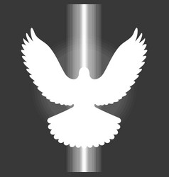Pigeonsign of holy spirit vector