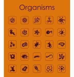 Set of organisms simple icons vector image vector image