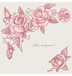 Roses corner ornaments vector