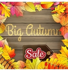 Autumn Big Sale typography poster EPS 10 vector image vector image
