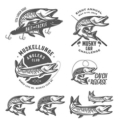 Musky fishing design elements vector