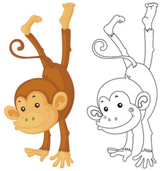 Animal outline for monkey flipping vector