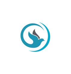 Bird dove logo template vector