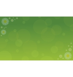 flat of spring backgrounds vector image