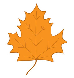 maple leaf orange sign 407 vector image vector image