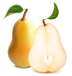 Ripe pears with green leaves vector image vector image