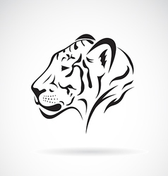 Tiger head on white background vector