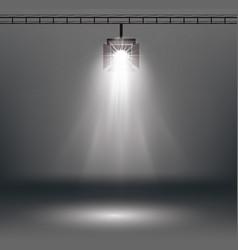 Scene illumination effects with spotlight vector